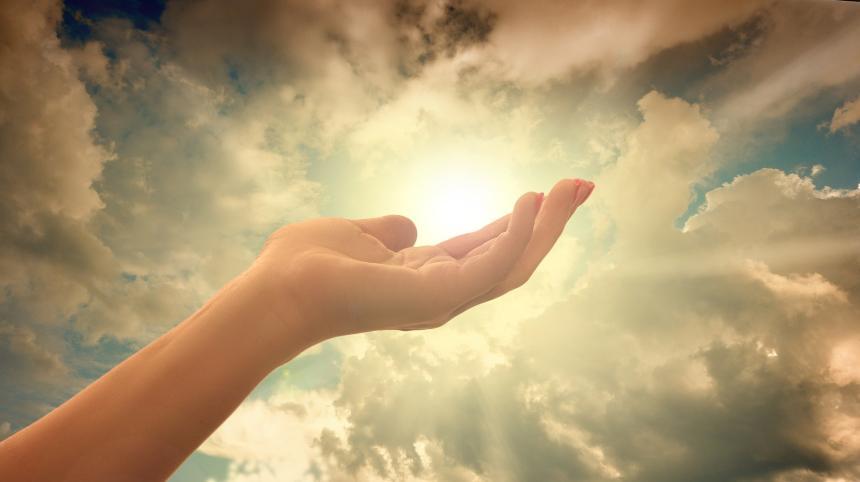 Hand och solljus.